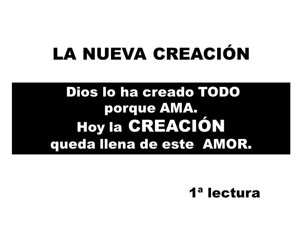 Dios lo ha creado TODO porque AMA.Hoy la CREACIÓN queda llena de este AMOR.