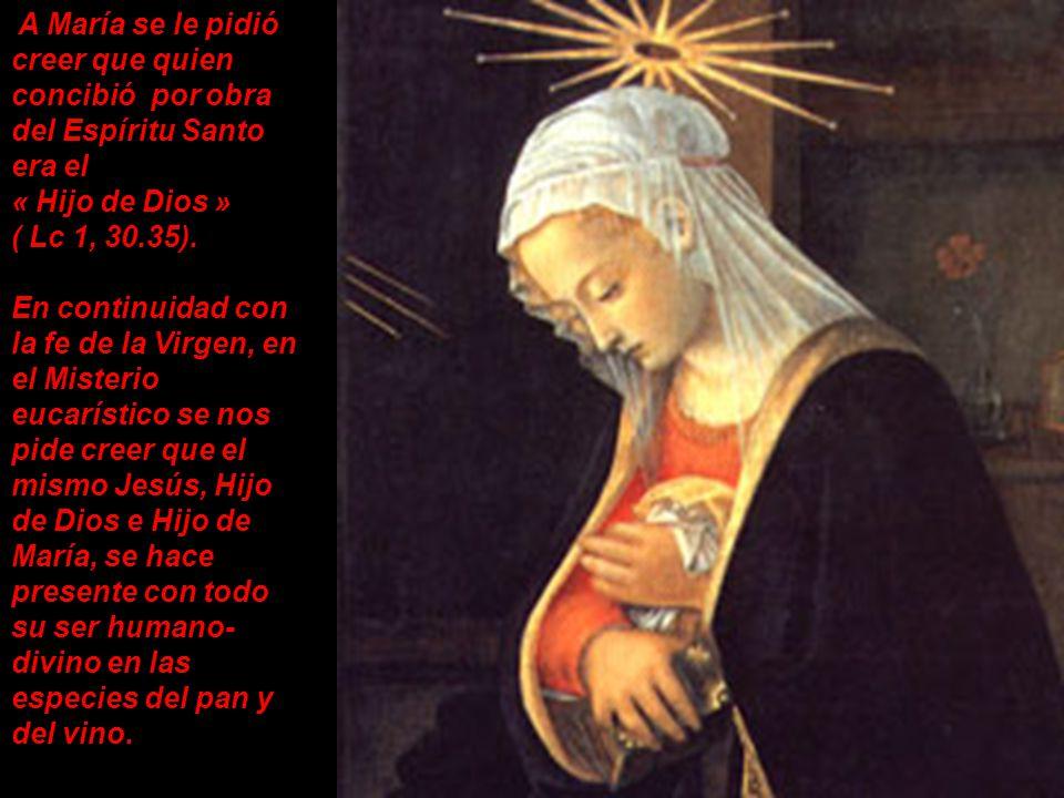 María ha practicado su fe eucarística, por el hecho mismo de haber ofrecido su seno virginal para la encarnación del Verbo de Dios. María concibió en