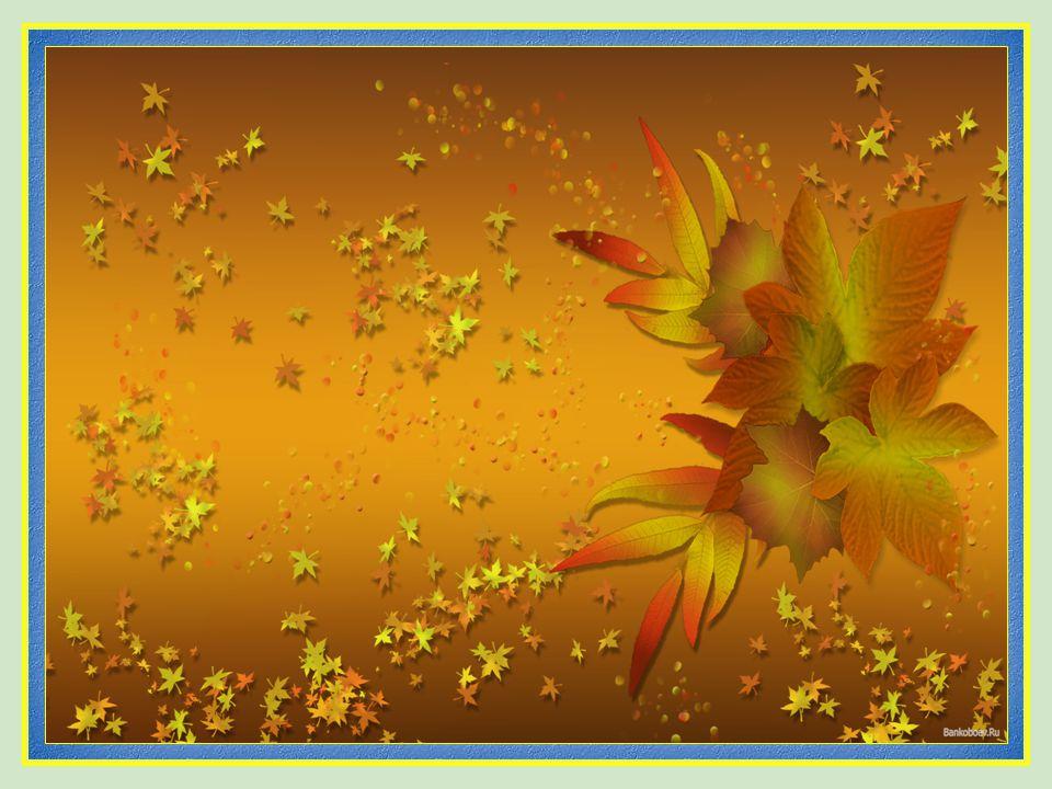 Vita Noble Powerpoints 2008 - 2013 …sobre las hojas marchitas del otoño…