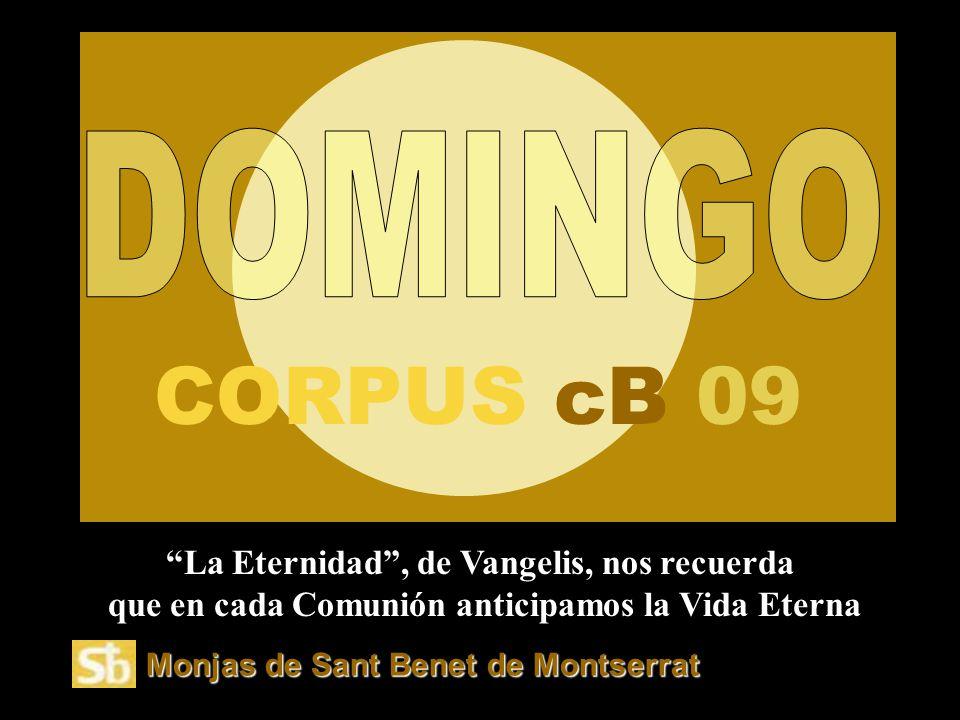 V ita noble P ower P o ints. wordpress.com Presenta: EL EVANGELIO DEL DOMINGO 14 a free PPS by: Vi ta no ble
