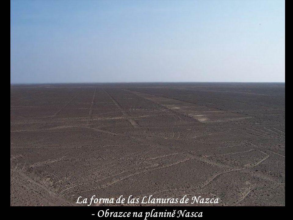 Figuras en la Llanura de Nazca Planina Nasca - obrazce