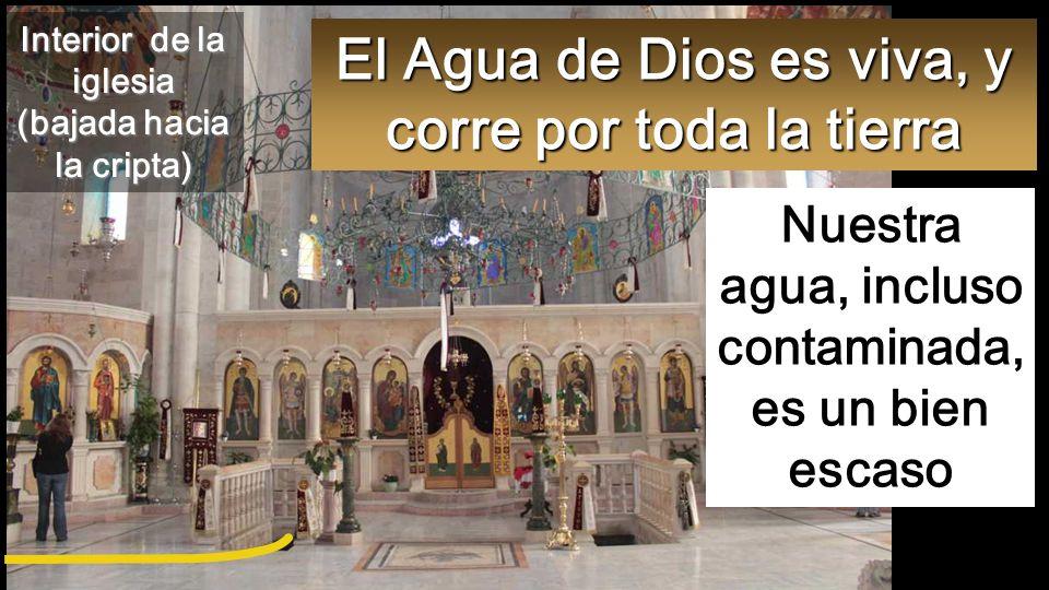 El Agua de Dios es viva, y corre por toda la tierra Nuestra agua, incluso contaminada, es un bien escaso Interior de la iglesia (bajada hacia la cripta)