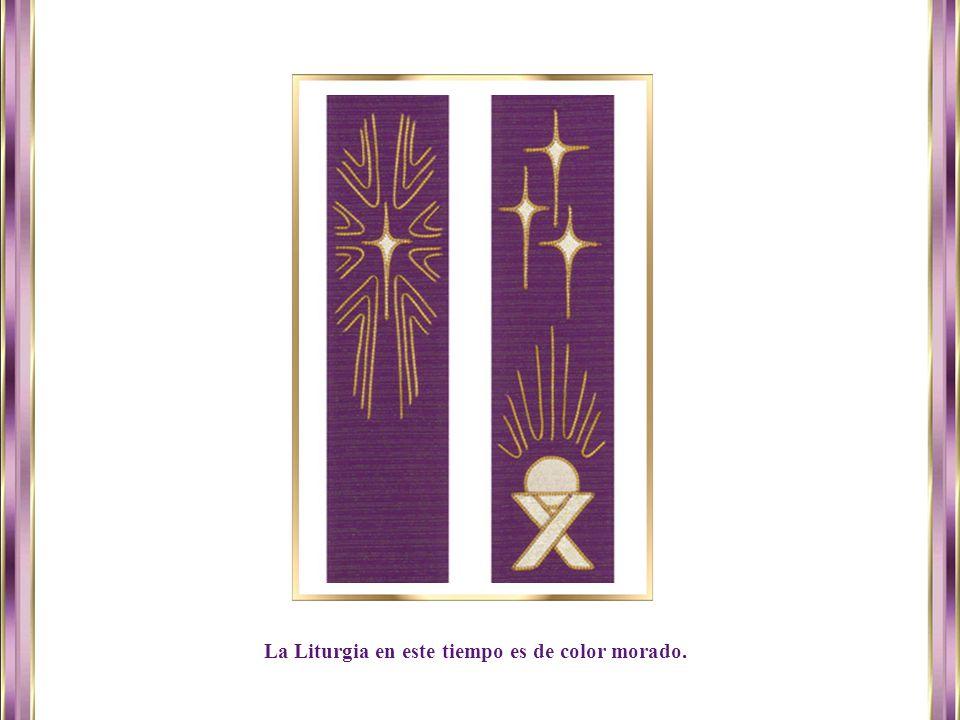 www.vitanoblepowerpoints.net La Liturgia en este tiempo es de color morado.