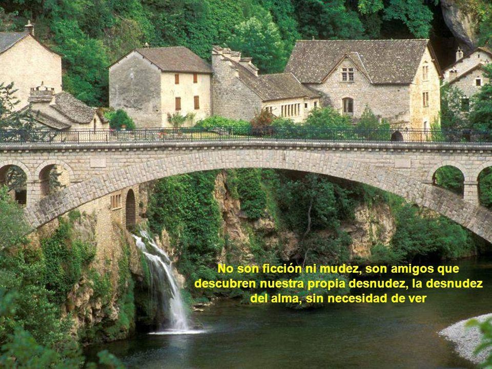 www.vitanoblepowerpoints.net Son los que comparten tu soledad y tus tristezas con su risa y alegría.