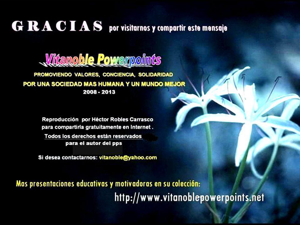 Vita Noble Powerpoints 2008 - 2013 2008 - 2013