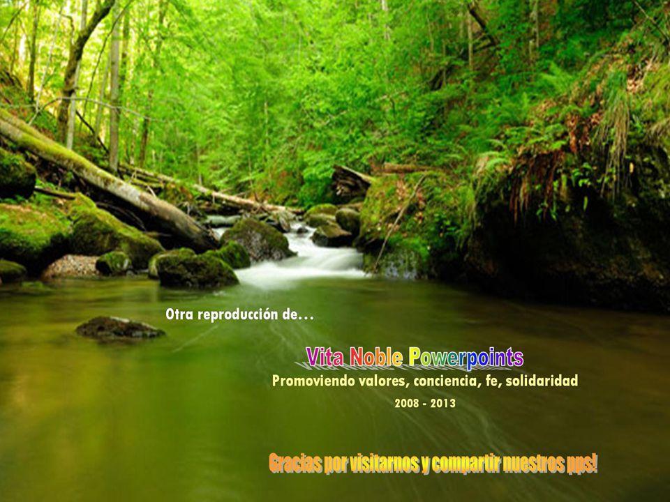 www.vitanoblepowerpoints.net Exactamente, la Felicidad es : ESTAR EN PAZ CONTIGO!