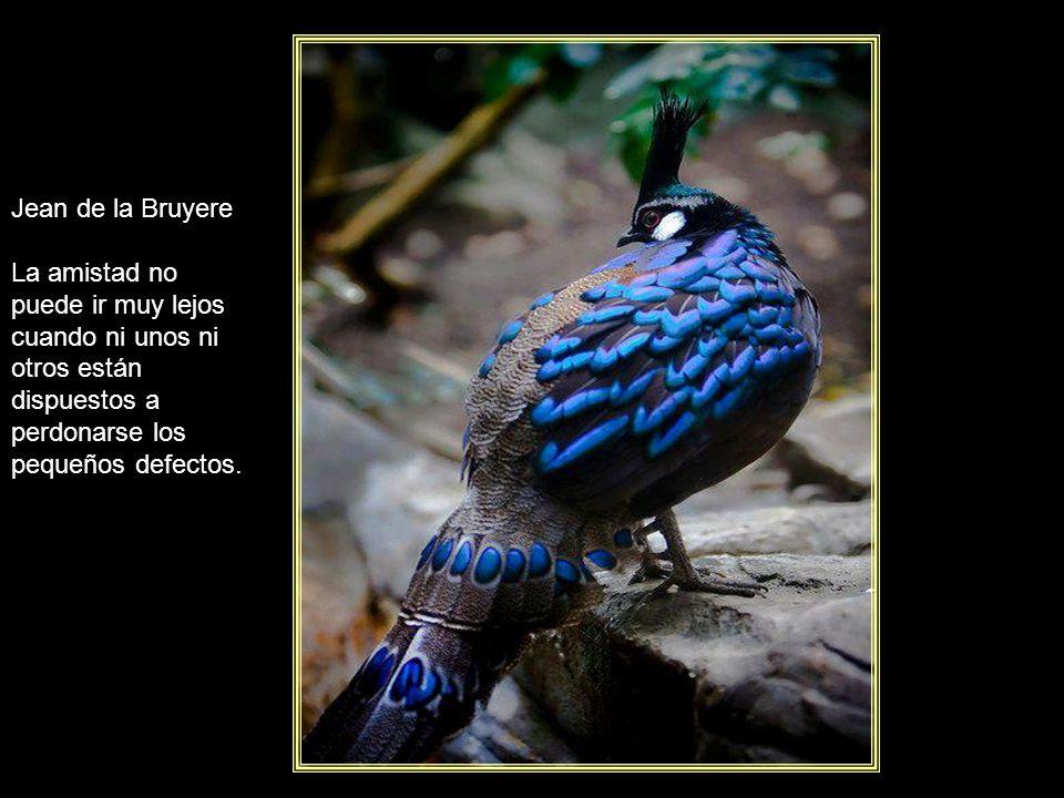 Jorge Luis Borges Yo no hablo de venganzas ni perdones, el olvido es la única venganza y el único perdón.