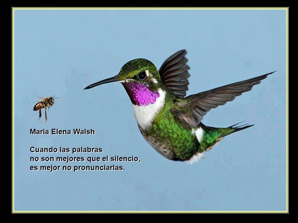 www.vitanoblepowerpoints.net Vargas Llosa Un escritor no escoge sus temas, son los temas quienes lo escogen.