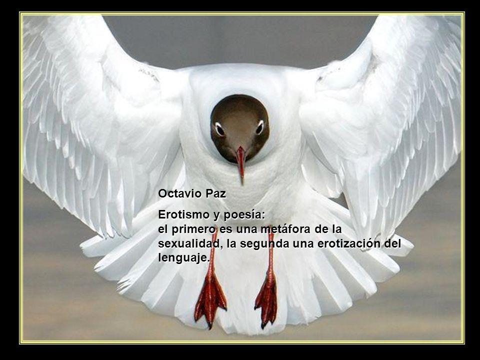 www.vitanoblepowerpoints.net Octavio Paz El amor nace de un flechazo; la amistad del intercambio frecuente y prolongado.