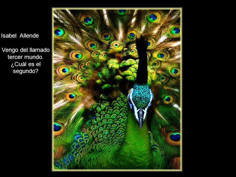 www.vitanoblepowerpoints.net Isabel Allende El que busca la verdad corre el riesgo de encontrarla. corre el riesgo de encontrarla.