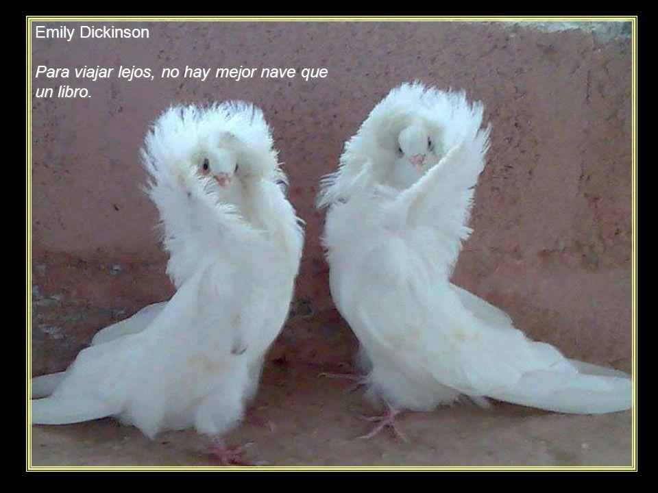 www.vitanoblepowerpoints.net Kawai Chigetsu Los nietos vienen y me sacan de la cama los años se van.
