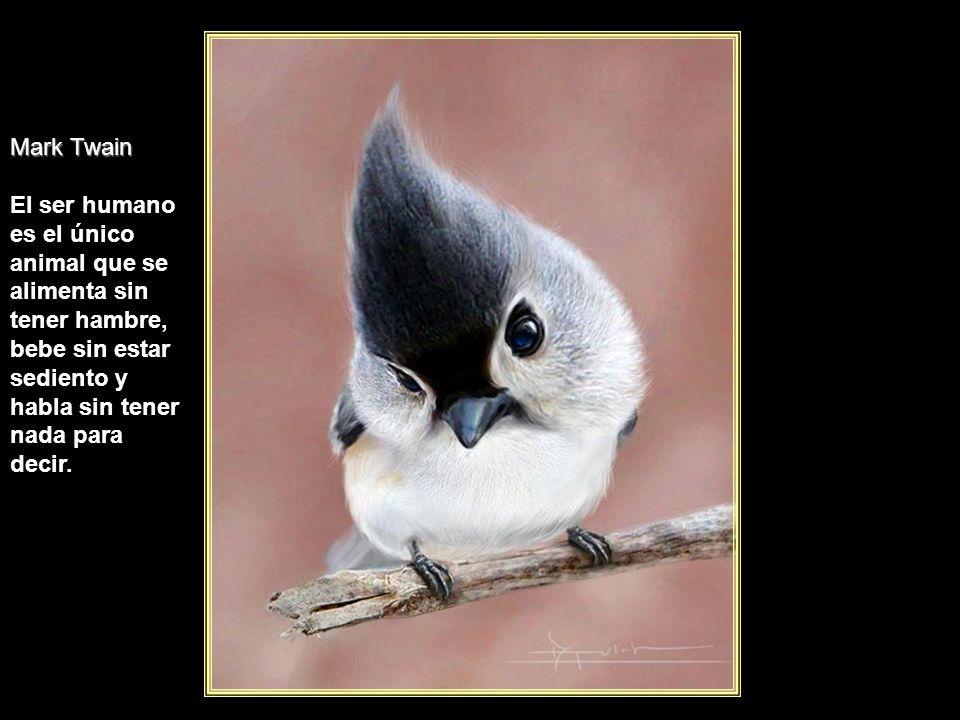 www.vitanoblepowerpoints.net José Ortega y Gasset La vida cobra sentido cuando se hace de ella una aspiración a no renunciar a nada.
