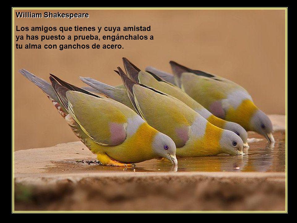 www.vitanoblepowerpoints.net Pablo Neruda ¿Sufre más aquél que espera siempre que aquél que nunca esperó a nadie?