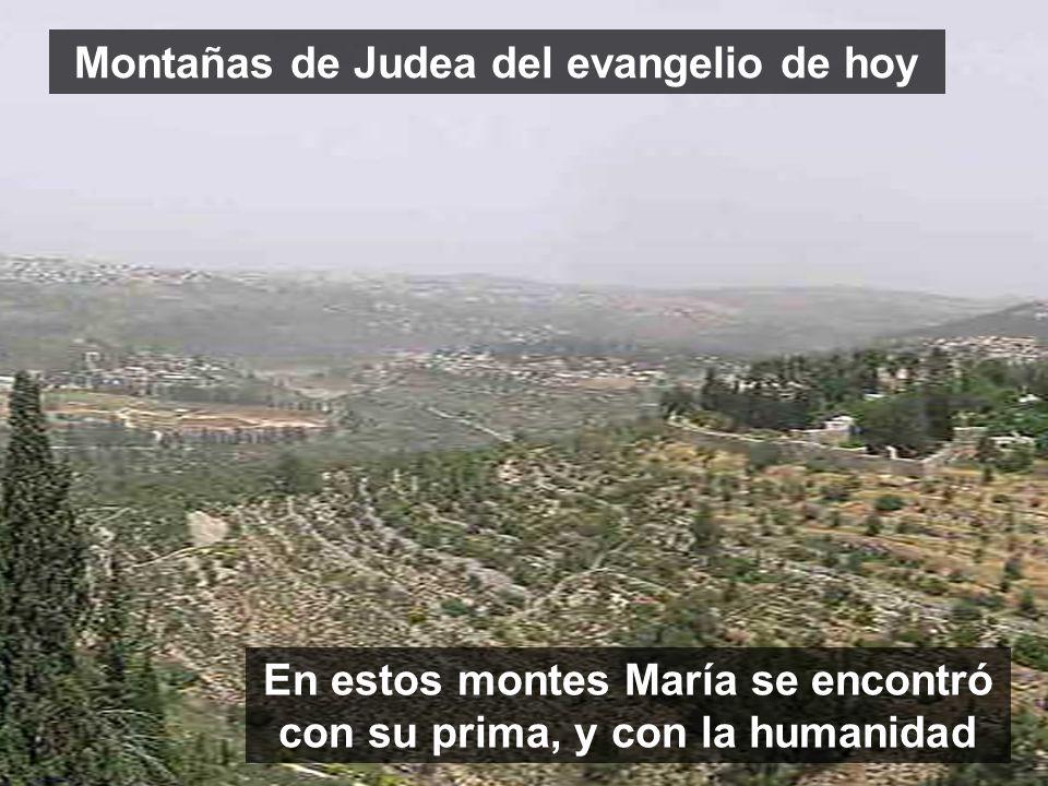www.vitanoblepowerpoints.net En estos montes María se encontró con su prima, y con la humanidad Montañas de Judea del evangelio de hoy