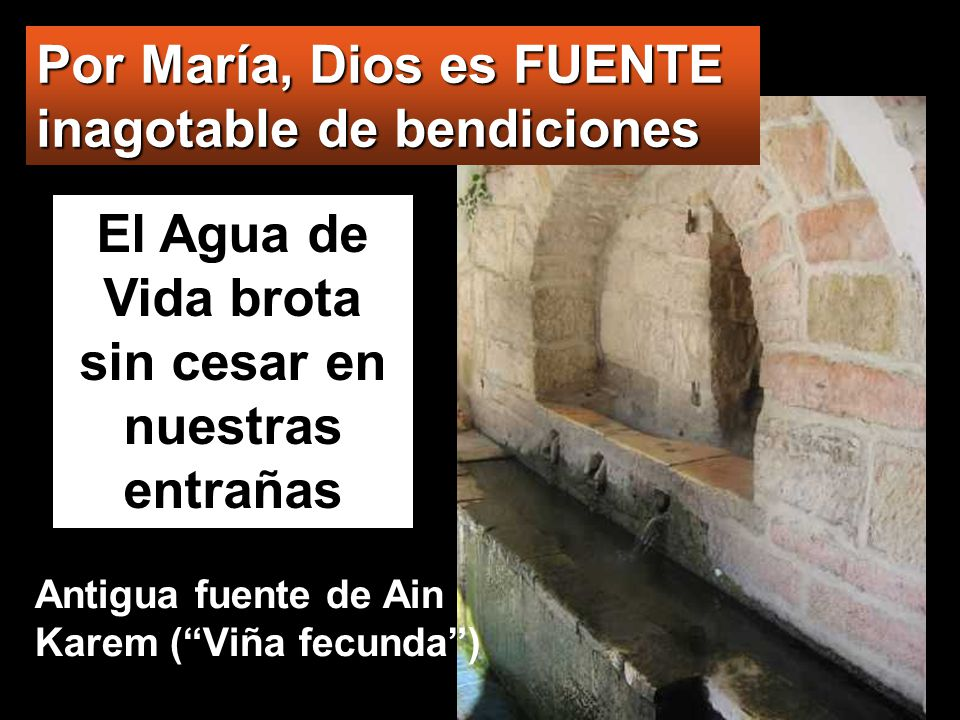 www.vitanoblepowerpoints.net El Agua de Vida brota sin cesar en nuestras entrañas Por María, Dios es FUENTE inagotable de bendiciones Antigua fuente de Ain Karem (Viña fecunda)