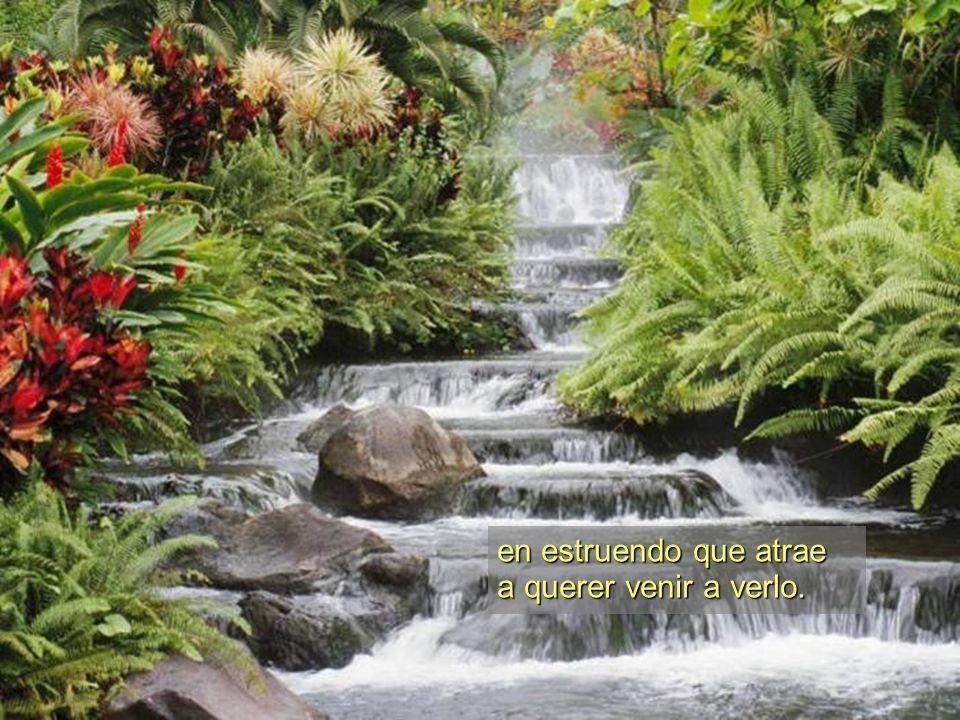 Naturaleza es cascada Que fresca cae desde el cielo