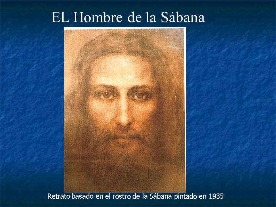 EL Hombre de la Sábana www.PPsPPt.com