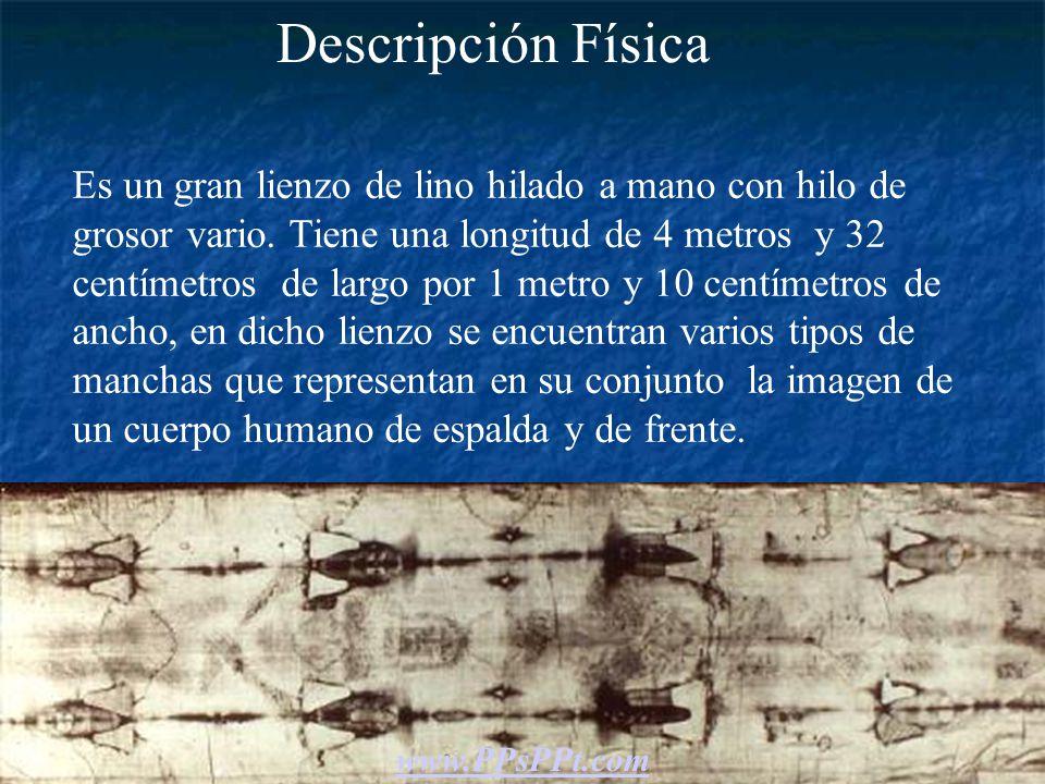 Descripción Física Es un gran lienzo de lino hilado a mano con hilo de grosor vario.