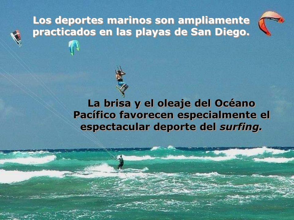 Los deportes marinos son ampliamente practicados en las playas de San Diego.