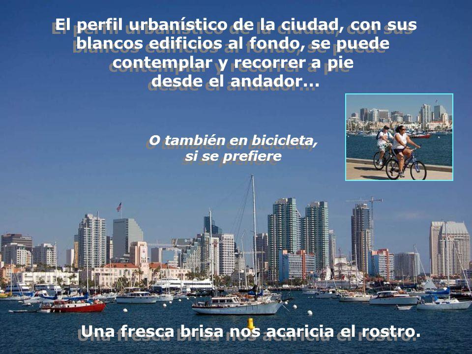 El perfil urbanístico de la ciudad, con sus blancos edificios al fondo, se puede contemplar y recorrer a pie desde el andador...