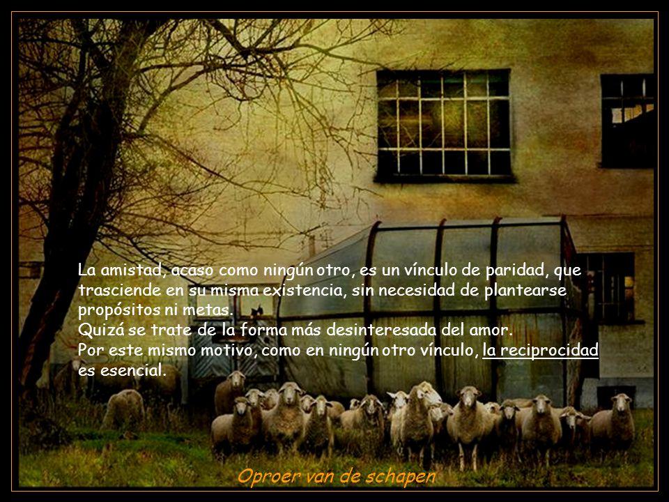 www.vitanoblepowerpoints.net Oproer van de schapen La amistad, acaso como ningún otro, es un vínculo de paridad, que trasciende en su misma existencia, sin necesidad de plantearse propósitos ni metas.