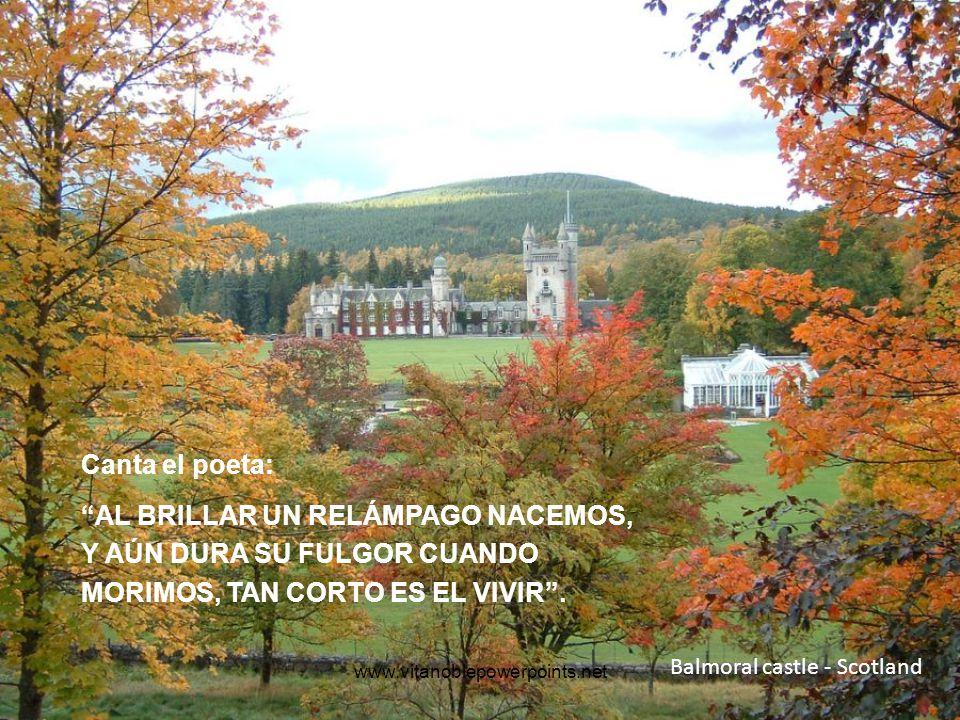 Castle ruins at Loch Ness, Scotland DESPACITO Y BUENA LETRA, EL HACER LAS COSAS BIEN, IMPORTA MÁS QUE EL HACERLAS (Antonio Machado).