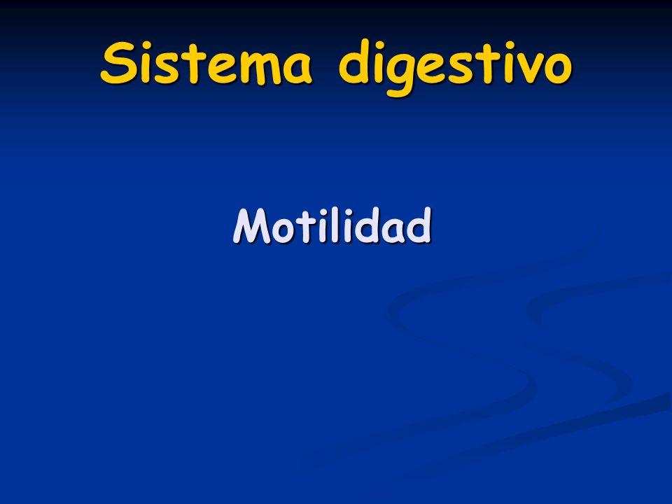 Sistema digestivo Motilidad