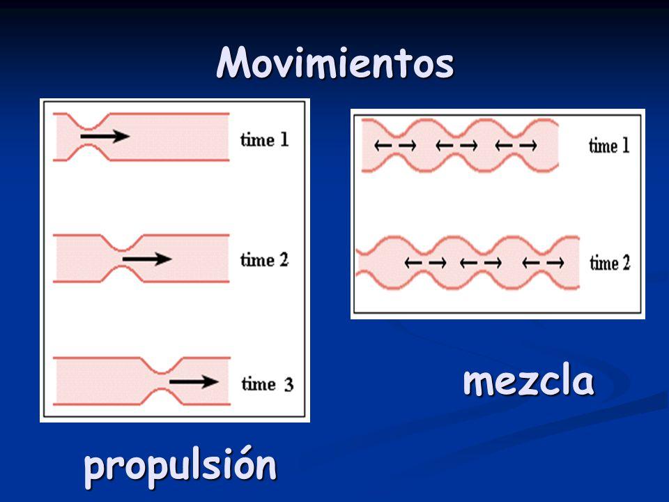 Movimientos mezcla propulsión