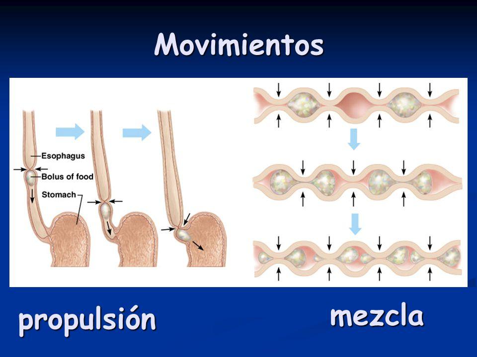Movimientos propulsión mezcla