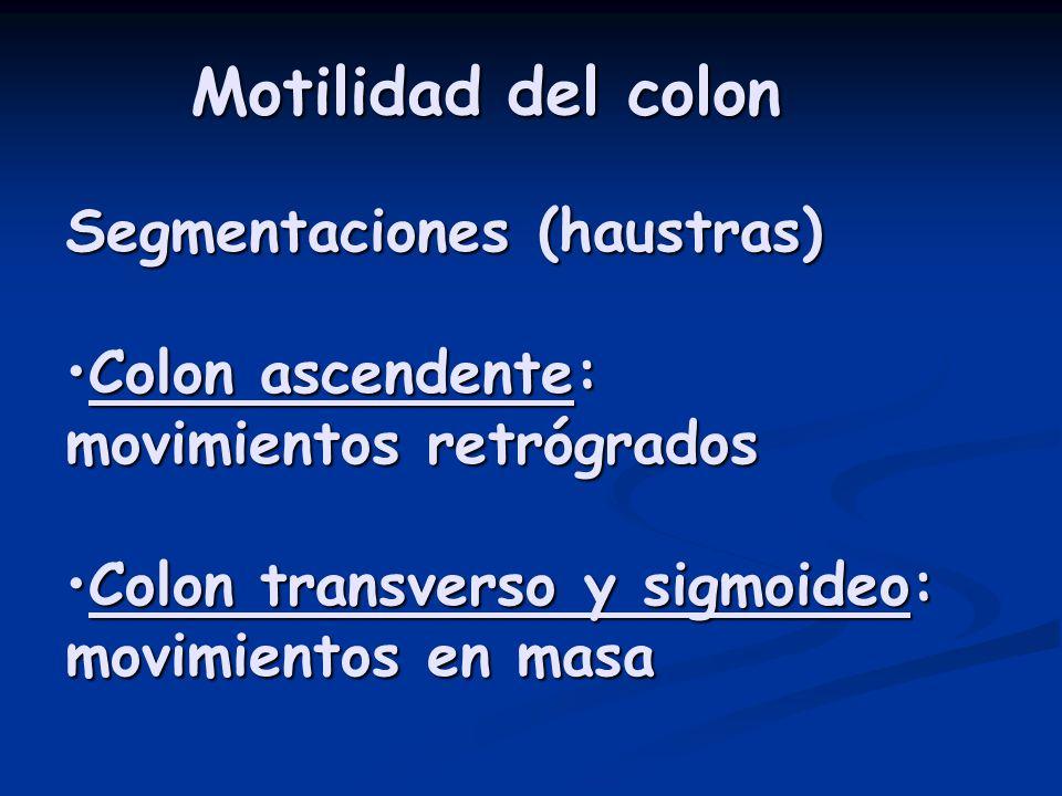 Segmentaciones (haustras) Colon ascendente:Colon ascendente: movimientos retrógrados Colon transverso y sigmoideo: movimientos en masaColon transverso y sigmoideo: movimientos en masa