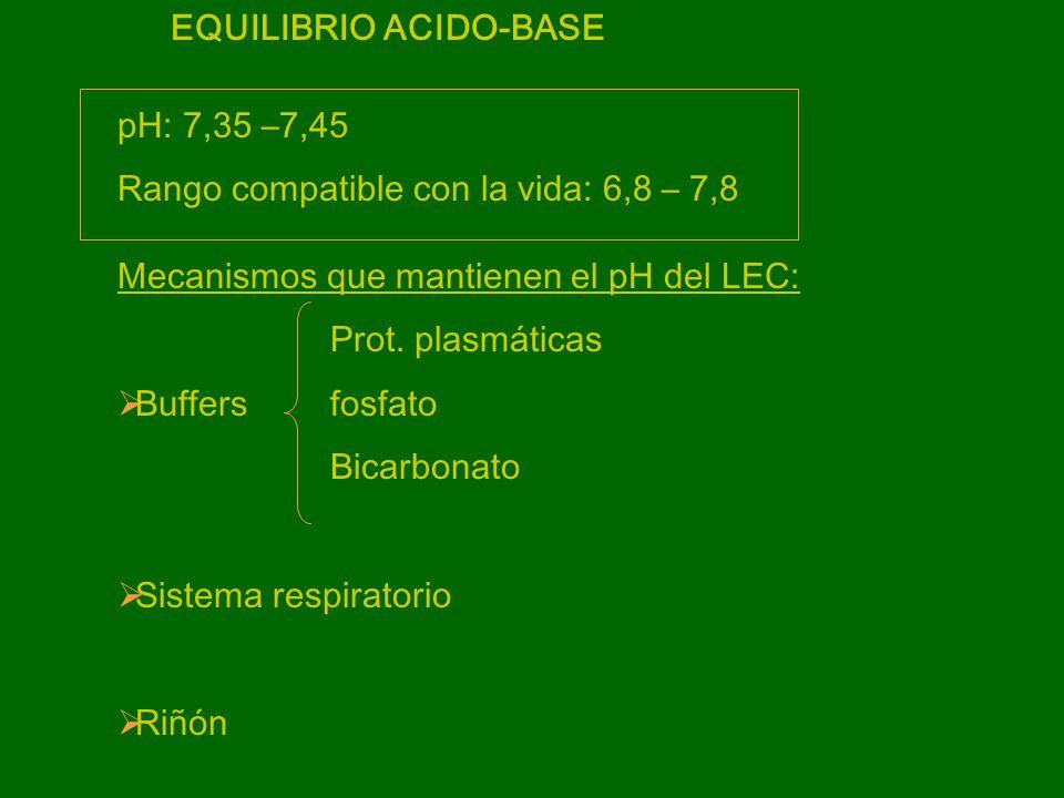 BUFFER BICARBONATO CO 2 + H 2 O H 2 CO 3 H + + HCO 3 - K´= [H + ] [HCO 3 - ]pK´=6.1 [CO 2 ][CO 2 ]= PCO 2 pH=pK´ + log [HCO 3 - ] [CO 2 ] Ecuación de Henderson-Hasselbach