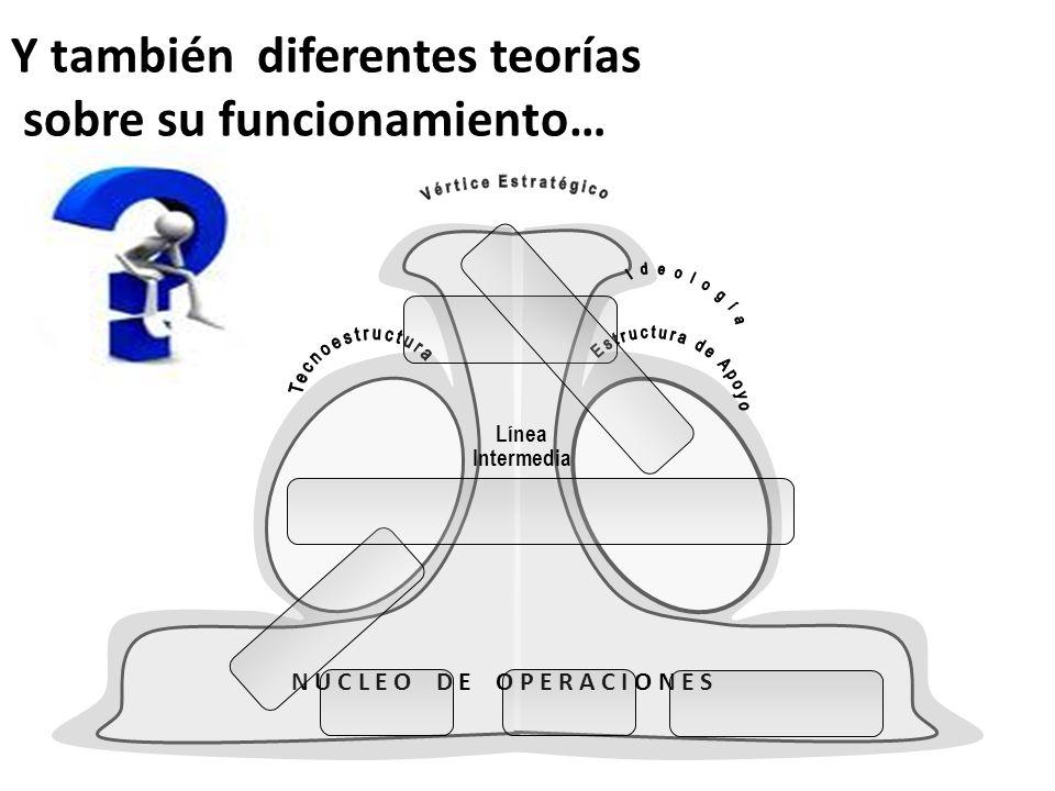 Y también diferentes teorías sobre su funcionamiento… N U C L E O D E O P E R A C I O N E S Línea Intermedia