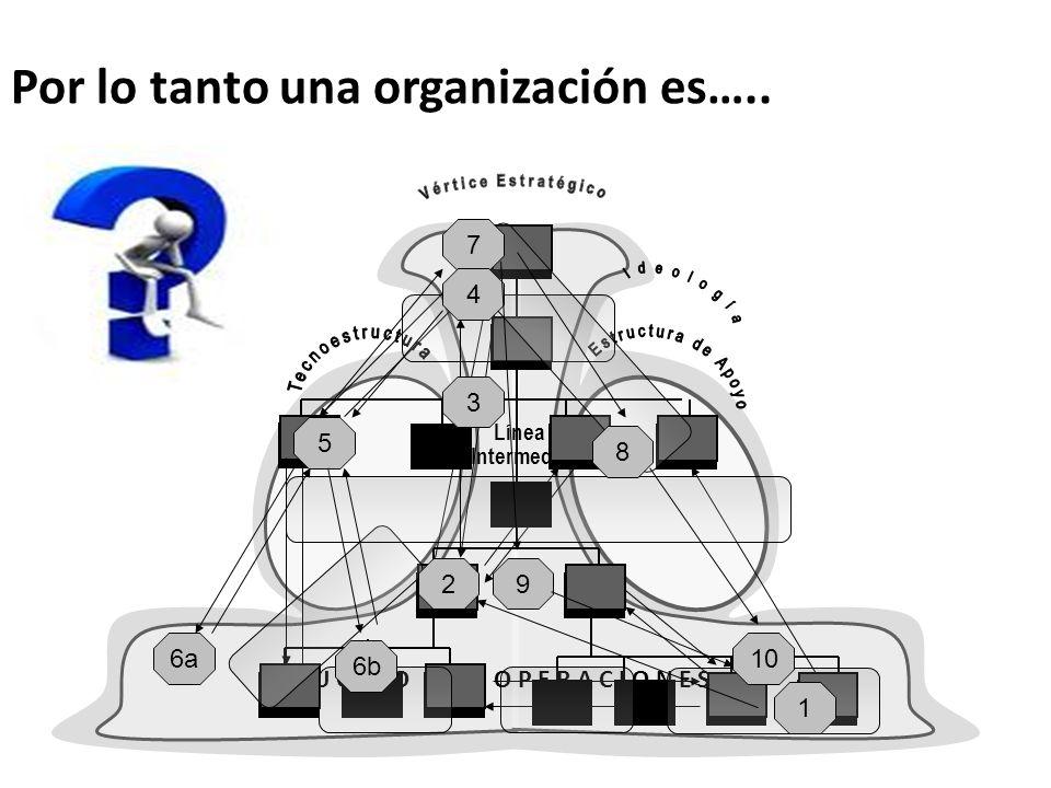 Por lo tanto una organización es…..