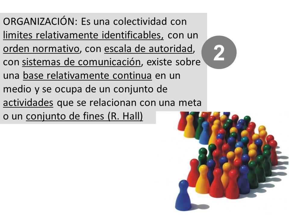 ORGANIZACIÓN: Es una colectividad con limites relativamente identificables, con un orden normativo, con escala de autoridad, con sistemas de comunicación, existe sobre una base relativamente continua en un medio y se ocupa de un conjunto de actividades que se relacionan con una meta o un conjunto de fines (R.