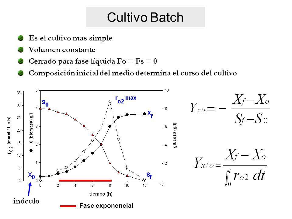 Cultivo Batch Es el cultivo mas simple Volumen constante Cerrado para fase líquida Fo = Fs = 0 Composición inicial del medio determina el curso del cultivo Fase exponencial inóculo