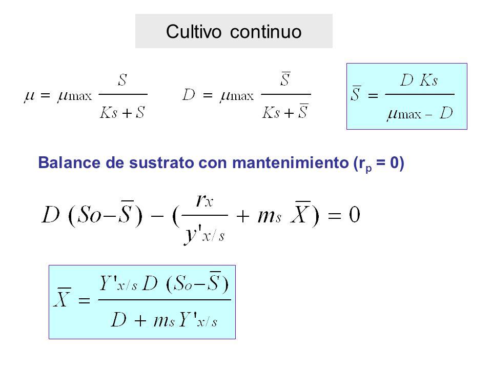 Cultivo continuo Balance de sustrato con mantenimiento (r p = 0)