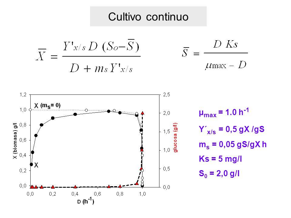 Cultivo continuo µ max = 1.0 h -1 Y´ x/s = 0,5 gX /gS m s = 0,05 gS/gX h Ks = 5 mg/l S 0 = 2,0 g/l