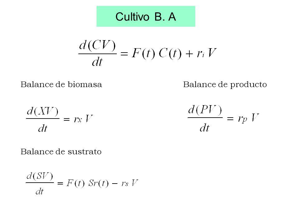 Cultivo B. A Balance de biomasa Balance de sustrato Balance de producto