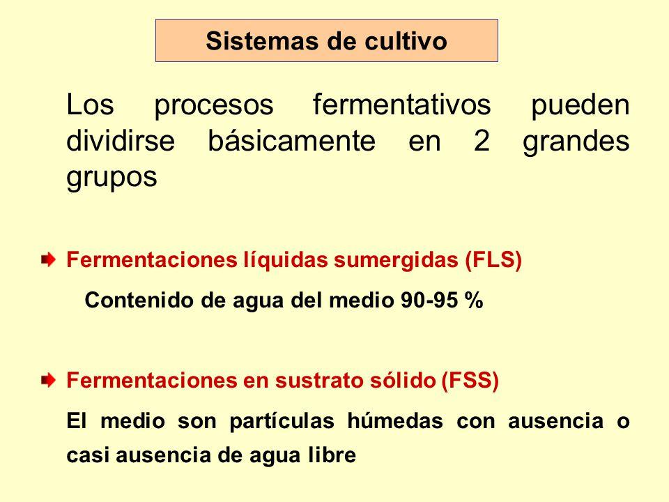Sistemas de cultivo Los procesos fermentativos pueden dividirse básicamente en 2 grandes grupos Fermentaciones líquidas sumergidas (FLS) Contenido de agua del medio 90-95 % Fermentaciones en sustrato sólido (FSS) El medio son partículas húmedas con ausencia o casi ausencia de agua libre