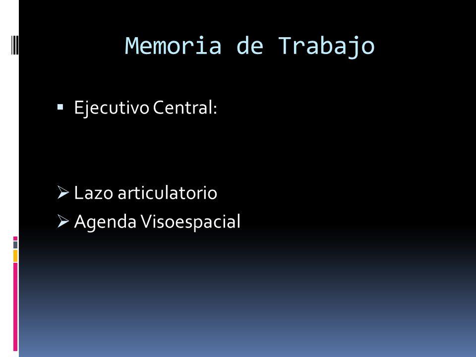 Memoria de Trabajo Ejecutivo Central: Lazo articulatorio Agenda Visoespacial