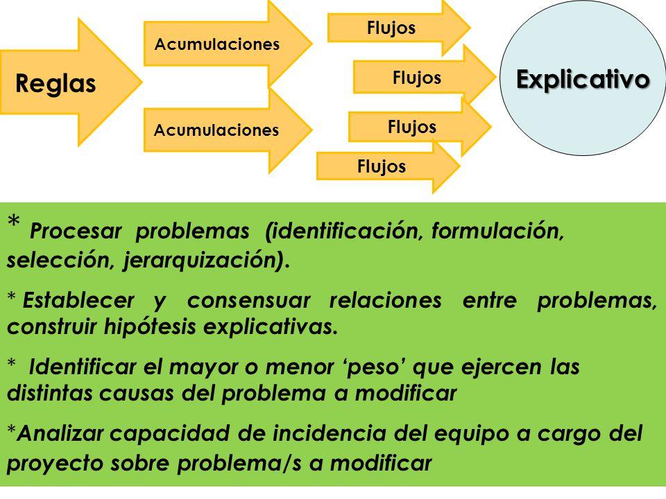 * Procesar problemas (identificación, formulación, selección, jerarquización).