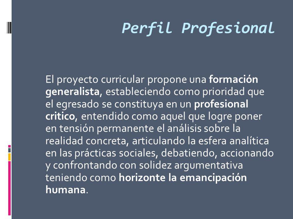 Perfil Profesional El proyecto curricular propone una formación generalista, estableciendo como prioridad que el egresado se constituya en un profesio