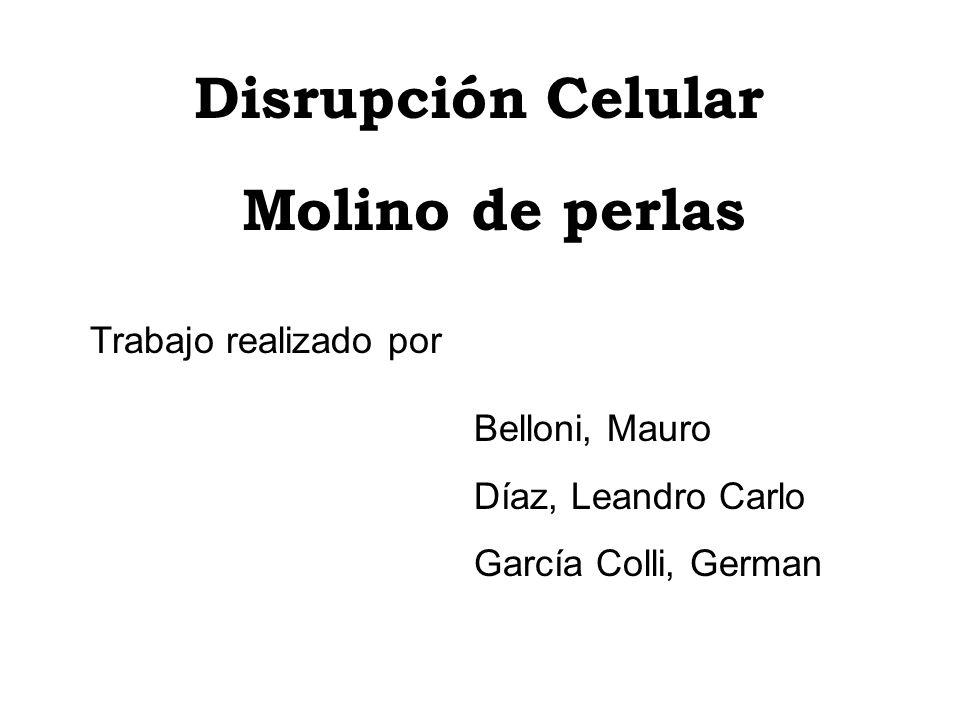 Disrupción Celular Molino de perlas Trabajo realizado por Belloni, Mauro Díaz, Leandro Carlo García Colli, German