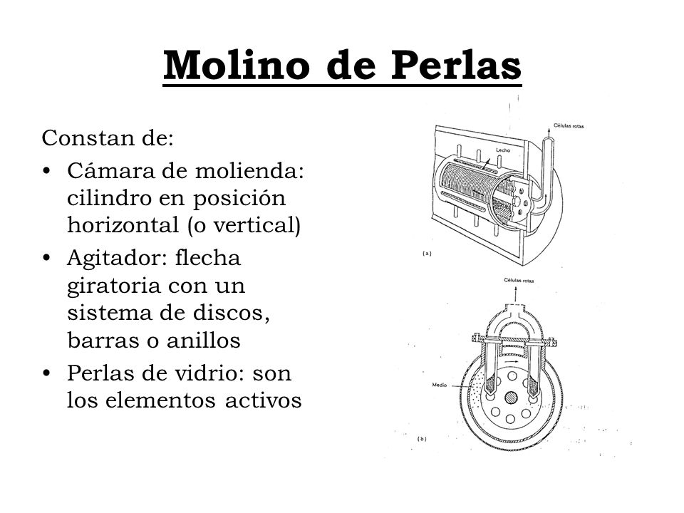 Molino de Perlas Constan de: Cámara de molienda: cilindro en posición horizontal (o vertical) Agitador: flecha giratoria con un sistema de discos, bar