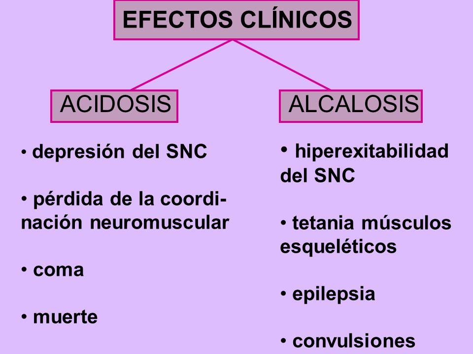 EFECTOS CLÍNICOS ACIDOSISALCALOSIS depresión del SNC pérdida de la coordi- nación neuromuscular coma muerte hiperexitabilidad del SNC tetania músculos