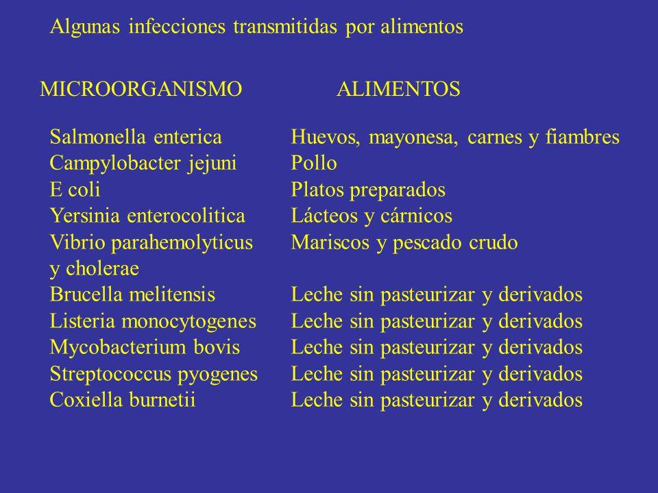 MICROORGANISMO ALIMENTOS Salmonella enterica Campylobacter jejuni E coli Yersinia enterocolitica Vibrio parahemolyticus y cholerae Brucella melitensis Listeria monocytogenes Mycobacterium bovis Streptococcus pyogenes Coxiella burnetii Huevos, mayonesa, carnes y fiambres Pollo Platos preparados Lácteos y cárnicos Mariscos y pescado crudo Leche sin pasteurizar y derivados Algunas infecciones transmitidas por alimentos