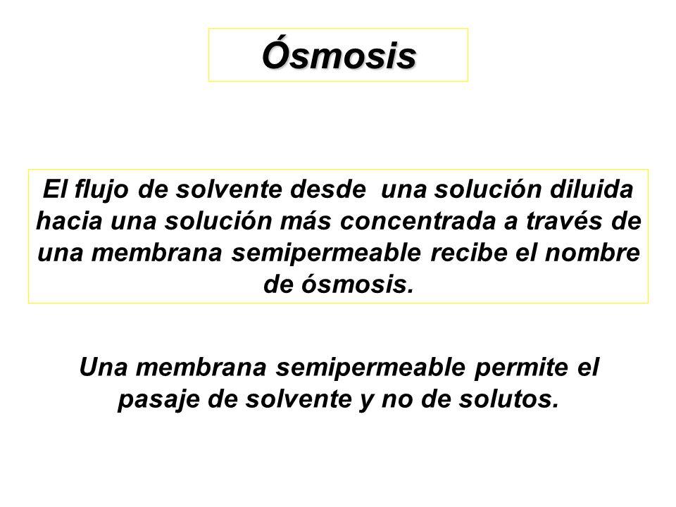 Ósmosis El flujo de solvente desde una solución diluida hacia una solución más concentrada a través de una membrana semipermeable recibe el nombre de ósmosis.