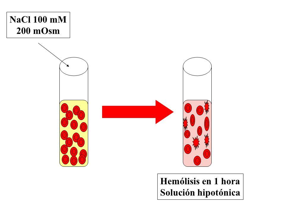 Hemólisis en 1 hora Solución hipotónica NaCl 100 mM 200 mOsm