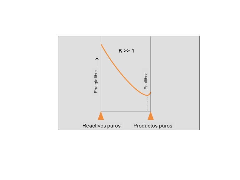 Equilibrio Energía libre Reactivos purosProductos puros K >> 1