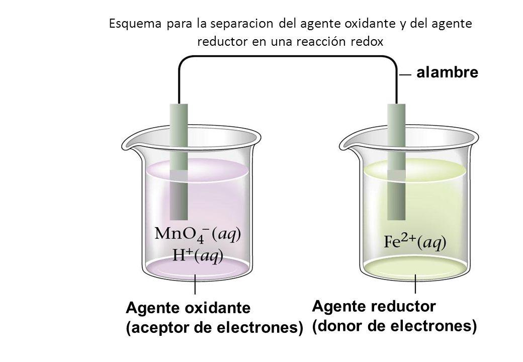 Esquema para la separacion del agente oxidante y del agente reductor en una reacción redox Agente oxidante (aceptor de electrones) Agente reductor (do